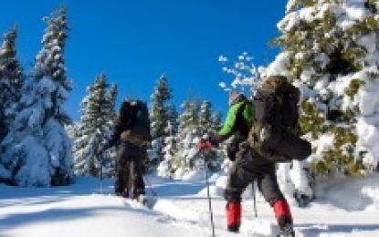 Wintersport – Disziplinen für Jedermann?