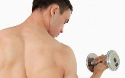 Mit der richtigen Ernährung den Muskelaufbau beschleunigen