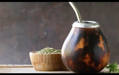 Warum Sie Yerba – Matetee Trinken Sollten